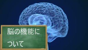 脳の機能(高次脳機能)